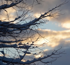 photos neige à la vie est belle