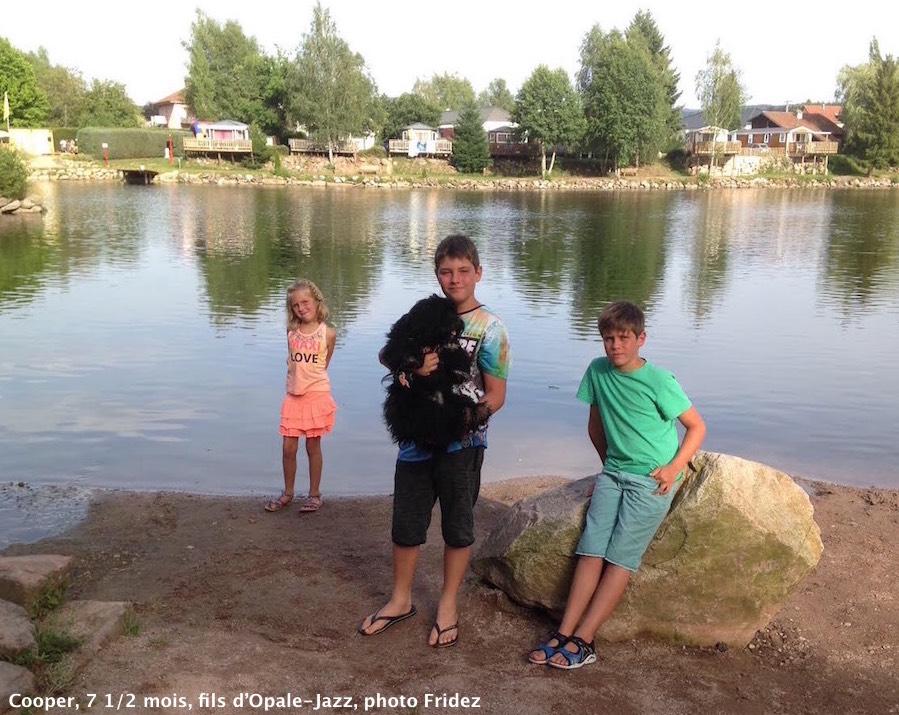 Les vacances en famille de Cooper