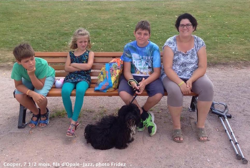 Les vacances en famille de Cooper bichon havanais