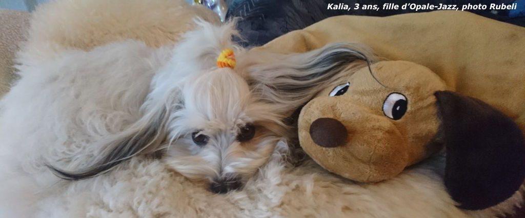 Kalia et sa petite compagne